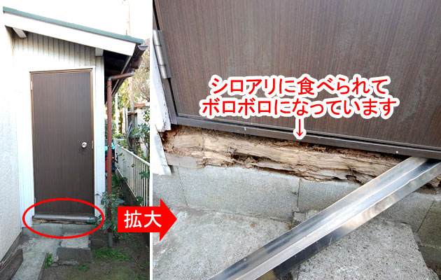 神奈川県茅ヶ崎市シロアリ対策施工事例
